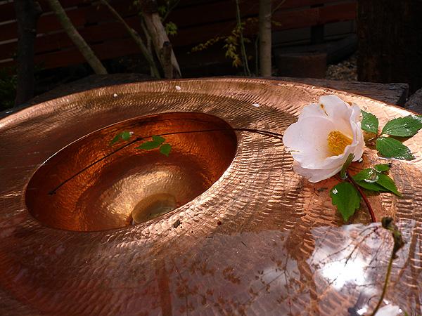 水鉢P1150701h