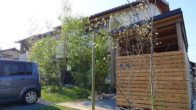 森と草屋根