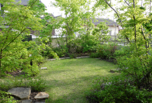 イロハの庭