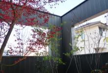 ニワマドのある庭452_雑木の庭