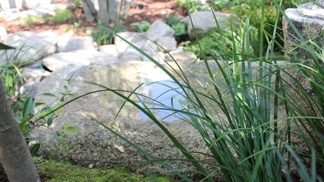 連水盤のある庭