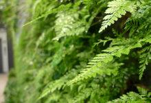 Tateniwaタテニワ 荒木組エントランス 「森に還る」