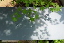 焼板と漆喰の家